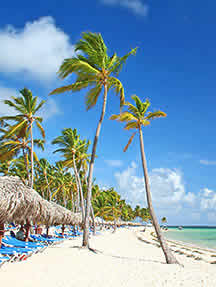 Beaches in Jamaica Image
